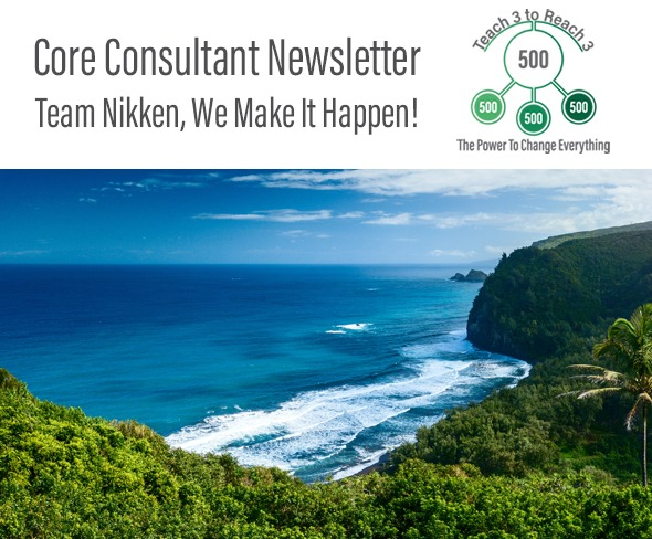 Nikken can be a 'Blue Ocean' in the area of home-based-business opportunities